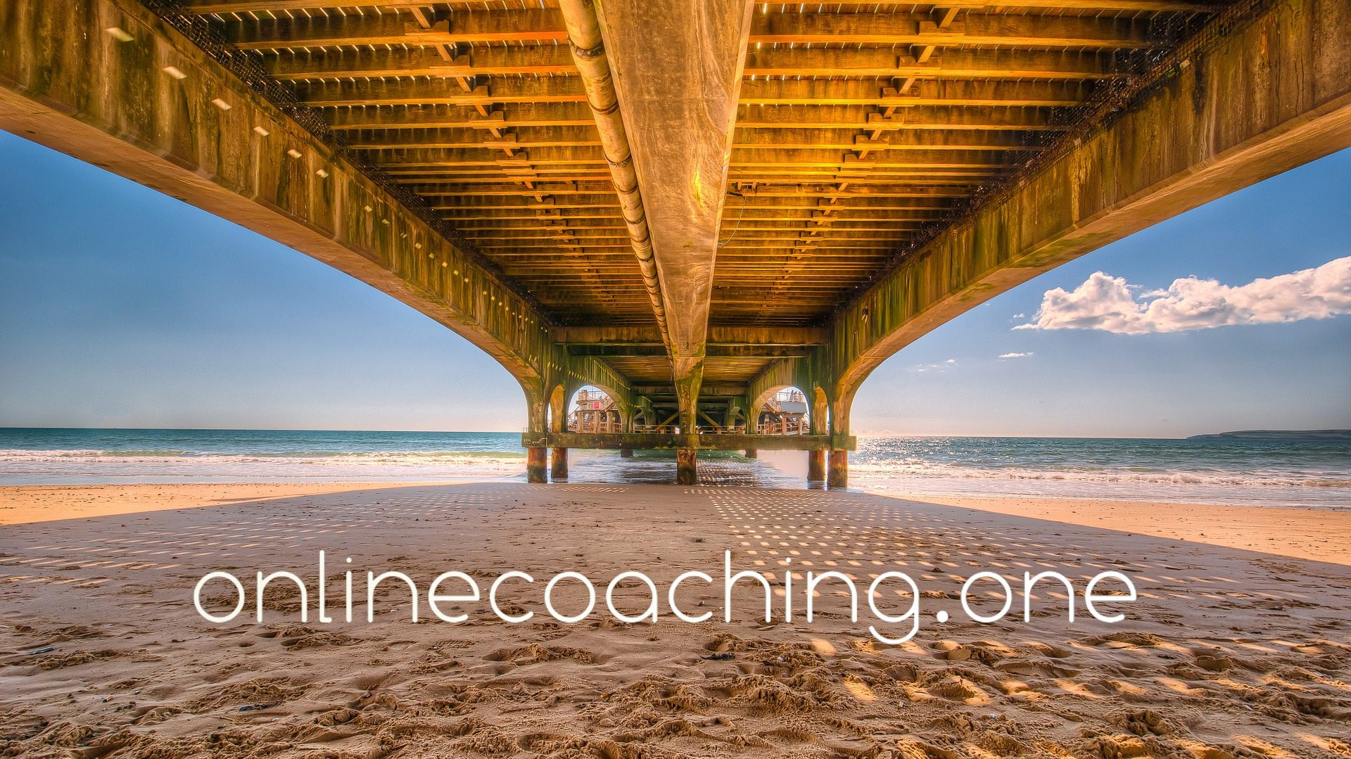 Online Coaching One
